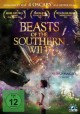 Preview: Beasts of the Southern Wild